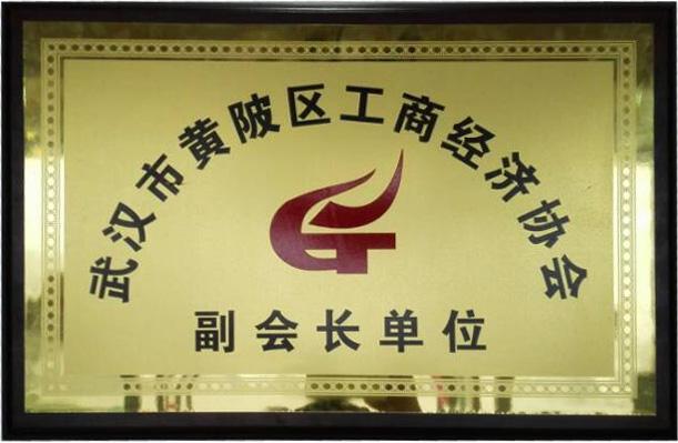 【凯美隆】黄陂区工商经济协会副会长单位